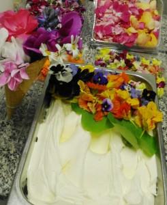 gelato-ai-fiori